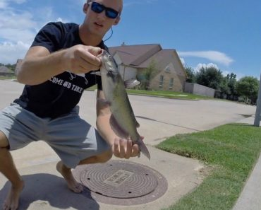 Would You Eat Fish Caught In The Sewer? Yes, Sewer Fishing Is Actually A Thing 1