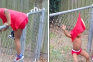 Kid Gets Stuck On The Fence 3 Times And Uncle Absolutely Loses His Mind Laughing 10