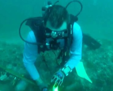Spear Fisherman Gets Stung By Lionfish 1