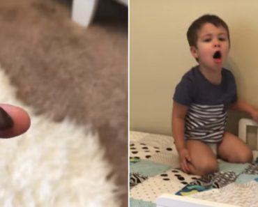 Kid Disgusted After Seeing Mom Eat Toy Elf Poop 9