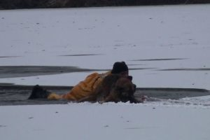 Firefighters Heroically Rescue Dog And His Owner Who Went To Save Him After Falling Through The Ice 10