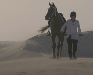 The Endurance Horse Rider of Dubai 6