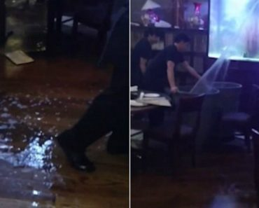 Restaurant's Giant Aquarium Cracks, Gushes Water Into Dining Room On Christmas Day 6
