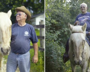 Old Rancher Has Special Bond With Blind Horse 1