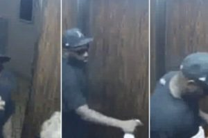 Purse Thief Gets Stuck On Elevator With Victim 11