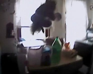 Police Body Cam Captures Squirrel Lunging At Officer 5