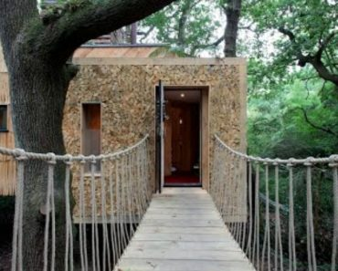 This Treehouse Might Be Worth More Than Your Real House 5