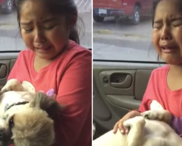 Heartbroken Girl Cries Over Dog's New Haircut 1