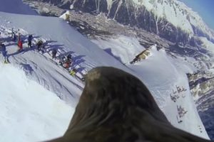 Get A Real Bird's-Eye View Of The Swiss Alps With This Footage Captured By An Eagle 10