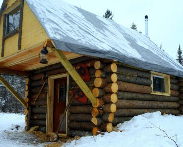 Guy With No Construction Skills Builds A Log Cabin For $500 1