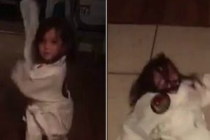 Little Girl Talks Big About Her Martial Arts Moves… Then Shows Them Off And Ends Up Flat On Her Back 11