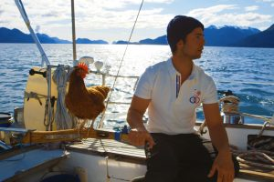 Sailing Solo Around the World… With a Pet Chicken 11