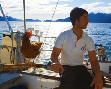 Sailing Solo Around the World… With a Pet Chicken 3