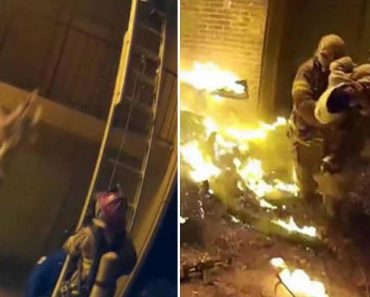 Firefighter Catches Little Girl Thrown from Third Story During Apartment Fire 2