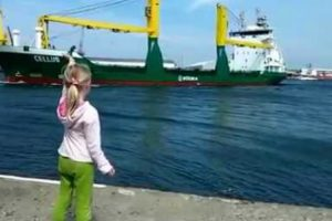 Girl Wants Ship To Honk And Regrets It Instantly 10