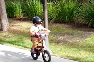 Extreme 3-Year-Old Boy Wipes Out While Riding Bike, Rushes Over To Watch Footage Of His Fail 11