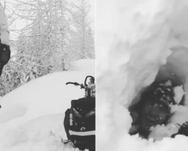 Guy Demonstrates How Deep Snow Is By Disappearing In It 4