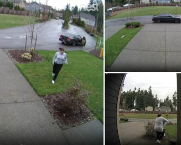 Woman Stealing Packages Gets What's Coming To Her Immediately After 7