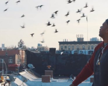 Beautiful Short Film About a Man Who Avoided Trouble by Taking Care Of His Rooftop Pigeons 7