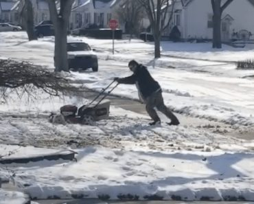 Man Tries To Mow His Lawn That Is Covered In Snow 3