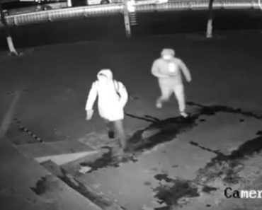 This Incompetent Criminal Accidentally Knocked An Accomplice Out During A Botched Burglary 2