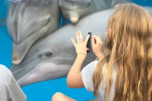 Amazing Moment Little Girl Calls Dolphins Towards Her By Playing A Comb 12