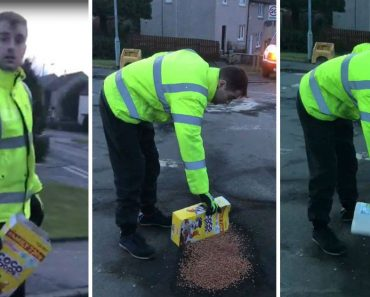 Pothole Filled With Coco Pops By 'Council Worker' Who Insists He's Just 'Following Orders' 3
