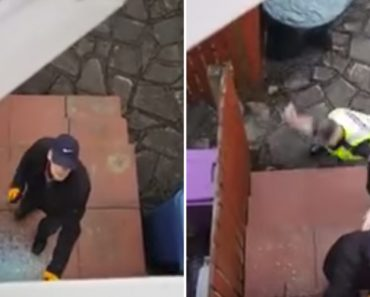 Man Waits Patiently For Police To Arrive As A Burglar Breaks Into His House 8