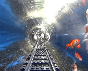 POV Footage Of A LEGO Train's Journey Through An Underwater Tunnel With Fish 5