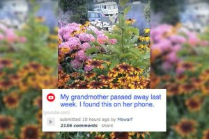 Man Finds Moving Video On Grandmother's Phone After She Passes Away 10
