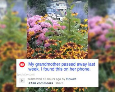 Man Finds Moving Video On Grandmother's Phone After She Passes Away 6