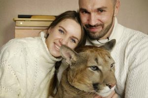 Couple Share Their Apartment With A Cougar 10