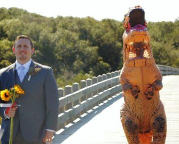 Goofy Bride Dressed As T. Rex Stuns Very Amused Groom 7