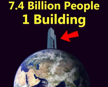 What If Everyone On Earth Lived Together In One Single Building? 6