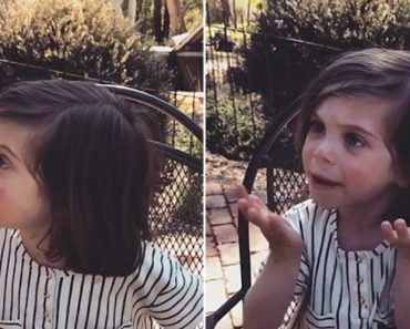 This Toddler Has Something To Say About Zoos That Everyone Should Hear 3
