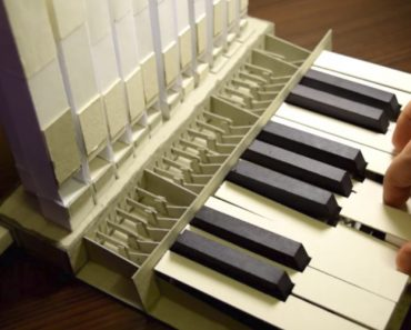 This Genius Created A Fully-Functional Organ Out Of Nothing But Paper 7