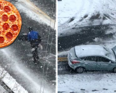 Nor'Easter Didn't Stop Pizza Delivery Man From Doing His Job 5