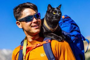 The Backpacking Cat Who Travels The US With His Human 12