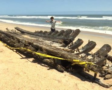 8-Year-Old and Mom Stumble Upon 1700s Shipwreck 2