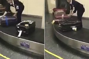 Handled With Care! Japanese Airport Worker Is Filmed Cleaning Luggage Before Passengers Pick It Up 11