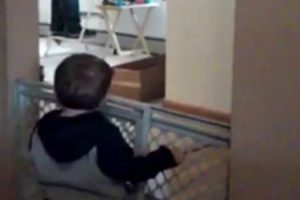 Dad Has Adorable Argument With His Toddler Son 10