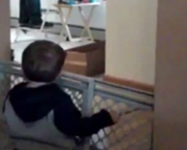 Dad Has Adorable Argument With His Toddler Son 2