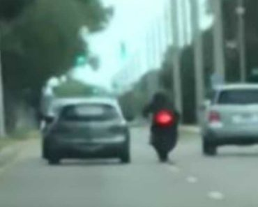 Cops Seek Driver Who Hit Motorcyclist in Road Rage Incident Caught on Video 1