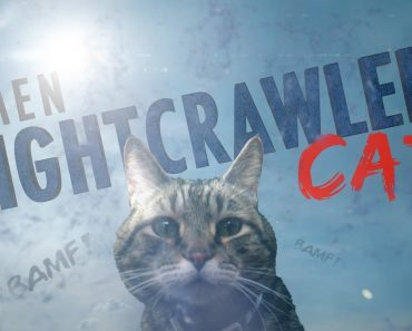 An X-Men Parody Where Nightcrawler Cat Takes Its Human on a Dangerous Teleportation Adventure 6