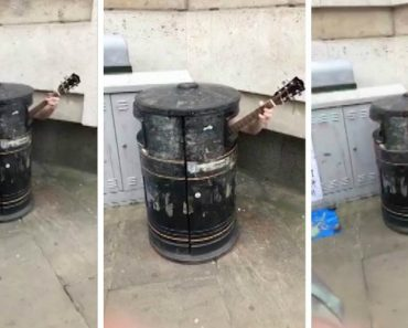 Guitarist Plays Tune Whilst Inside Rubbish Bin 8