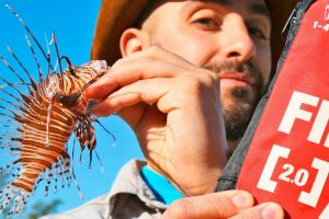 How to Cure a Lionfish Sting! 11