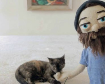 A Tiny Kitten Plays With a Singing Puppet Version of Aesop Rock in Video for a Song About His Cat 5
