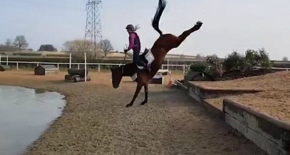 Moment Horse Sends Rider Flying With A Spectacular Buck 3