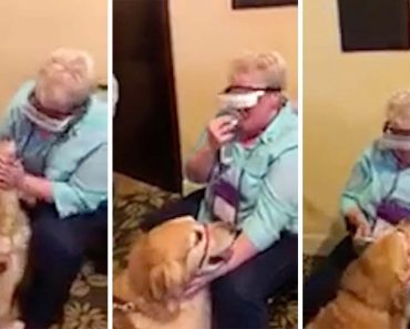 Legally Blind Woman Sees Guide Dog For First Time 8