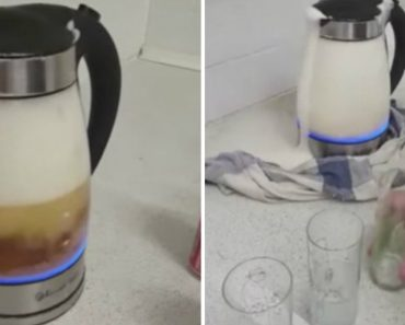 "Drunken Attempt To Make ""Hot Lager"" In a Kettle Goes As Well As You'd Expect 1"